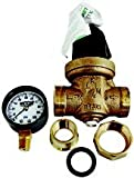 Wilkins 70GG-.5 Pressure Regulator