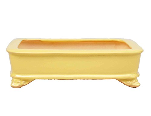 YUKIMONO Tokoname Rectangle Bonsai Pot,7.5-Inch Yellow