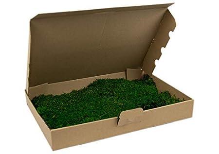 Premium Flachmoos konserviert, ausgesuchtes, echtes haltbares Moos für die Dekoration kaufen, Prime, Moss, Deko, Dekoration,