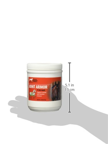 Kentucky Performance Prod 044096 Joint Armor Healthy Joint Supplement for Horses, 1 lb
