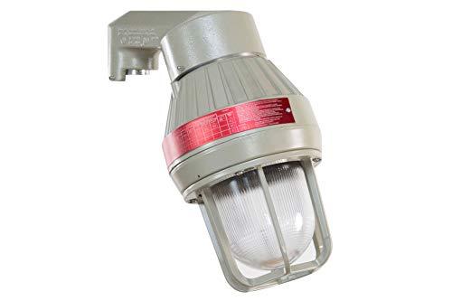 (Larson Electronics 1218OXN2JZ4 Ceiling Mount Explosion Proof 150W LED Light Fixture - 12,500 lm - C1D1 - Flat Surface )