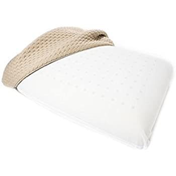 Amazon Com Sealy Embodytm Proformance Memory Foam Pillow