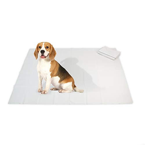 NAC Home Playpen Floor Mat Dog MAT Dog Training Pad Underlay - Reusable and Waterproof - Wee and Poo Proof (Small - 40