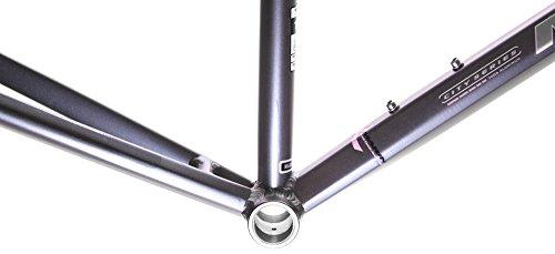 "15"" MARIN SAN ANSELMO Women's Hybrid City 700c Bike Frame Grey Aluminum NOS NEW"