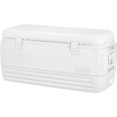 Igloo 120-Quart Polar Cooler