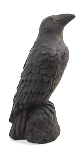 - Raven Statue French Figure Crow Home and Garden Statues Concrete Ravens Statuary