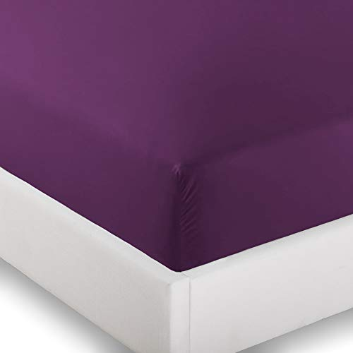 Ivy Union 2 Twin XL Fitted Bed Sheets (2-Pack) - Twin Extra Long, 15