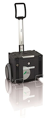 Durr Technik USA C1601 SAS-038 Silent Air System Oil-Free Quiet Portable Compressor for Laboratory in Sound Proof Cabinet, 330W