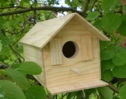 Wood Bird House Kit