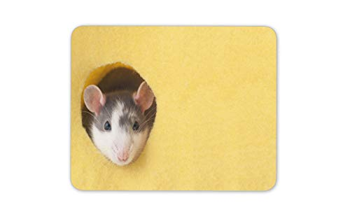 Cheeky Fancy Rat Mouse Mat Pad - Pet Rodent Animal Cute Fun Computer Gift #14884