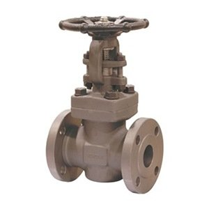 Gate Valve, 1 In, Threaded by Newco