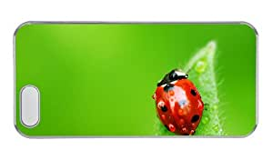 Customized protective iphone 5S case Green background leaf red ladybug PC Transparent for Apple iPhone 5/5S