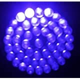 Jumbuk * 38 Ultra Bright LED's - 2 inch - BULB ONLY (Blue)