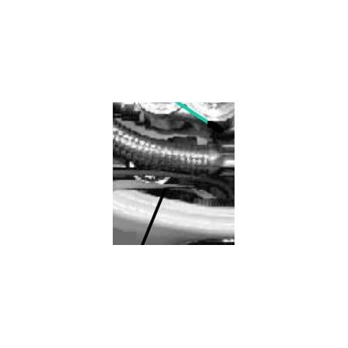 American Standard 738781-0070A Backflow Preventer, N/A