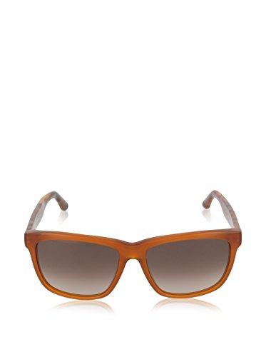 TH Tommy Marrón Hilfiger Sonnenbrille 1243 Havana S Hqz4S