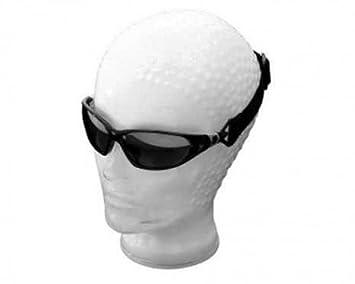 Motocicleta Gafas de sol, Casco Gafas de sol de Highway Hawk