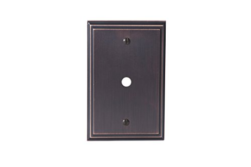 Oil Rubbed Wall Plate - 3