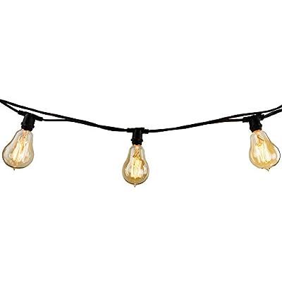Bulbrite 810054 String10/E12/Black-G16KT Indoor & Outdoor String Light w/Incandescent 11W Clear G16 Bulbs, 14', 10 Lights, Candelabra/E12 Base