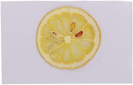 クラフト ブックマーク用 レジンキャスティング用 装飾 電話ケース用 押し花 押しフルーツ 全5様式 - レモン