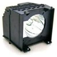FI Lamps Toshiba Y66/Y67_5594 Compatible with Toshiba Y66/Y67-LMP TV Replacement Lamp with Housing