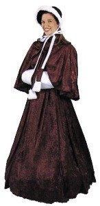Dickens Dress (Dickens Dress)