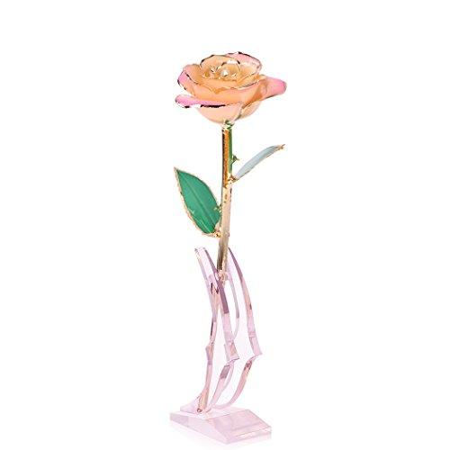 En Largo nbsp;ct Caja 24 Oro Jttvo Revestimiento pink Acrílico Auténtica De Tallo Regalo Expositor Rosa Con Dorada White BXAxBg