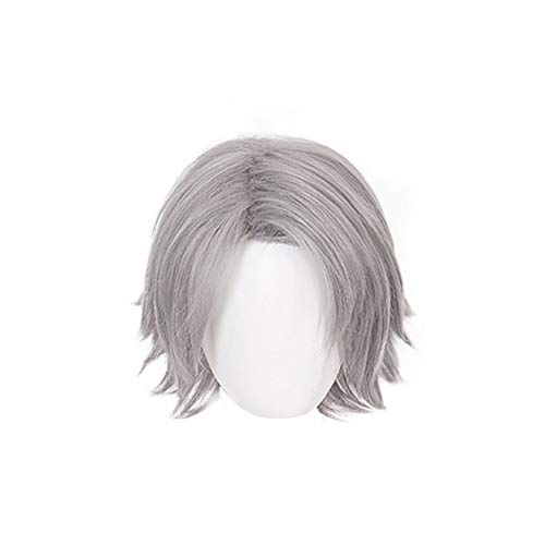 HLZG for Dante Wig, Short Straight Silver Gray DMC Game Cosplay Costume Halloween Anime Hair -