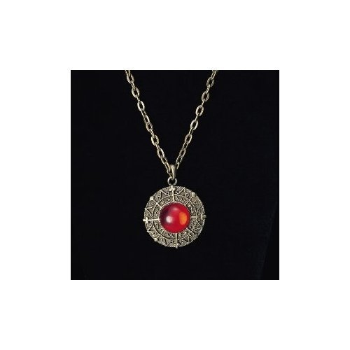 Lost Treasure Necklace with Red Gem Costume Accessory (Ahoy Matey Mens Adult Costume)