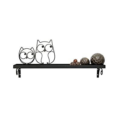 Boston Warehouse Decorative Owl Wall Shelf