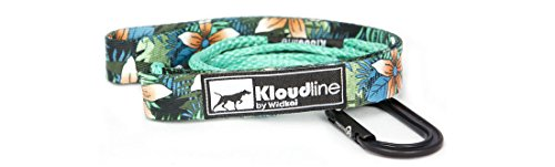 lightweight-kloudline-minimus-leash-4-or-6-foot-with-traffic-handle-for-big-or-small-dogs-4-foot-alo