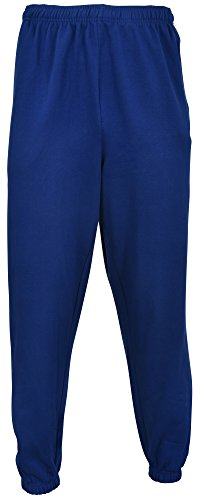 Champion Men's Big-Tall Fleece Pant (2X Tall, Royal)