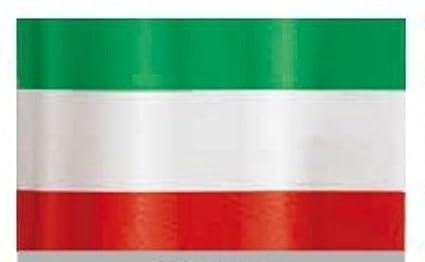 ROTOLO NASTRO PVC ITALIA H 31 CENTIMETRI METRI 100 INCARTAMI-ITALIA