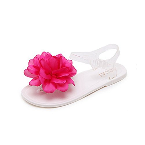 GIY Women's Fancy Flip Flop Jelly Sandals Summer Beach Clear