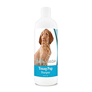 Healthy Breeds Young Puppy Soap-Free, Detergent-free, Tear-less, Baby Powder Scent Shampoo 8oz 17