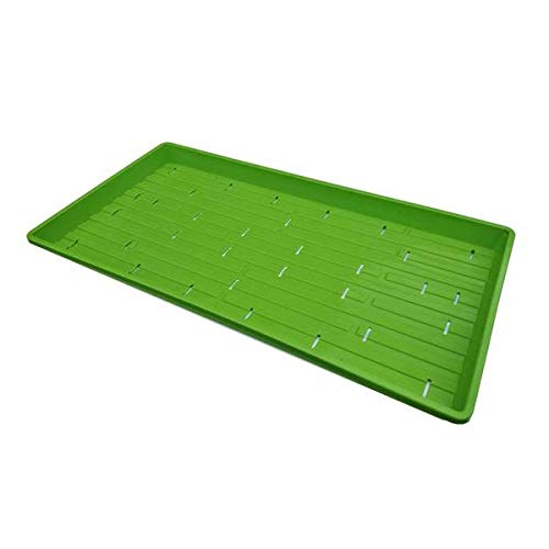 Bootstrap Farmer Microgreen Trays, Green 10 Pack, Extra Strength with Holes Shallow 1020 Seed Starting Plant Tray Grow Microgreens Wheatgrass Fodder Sprouting by Bootstrap Farmer