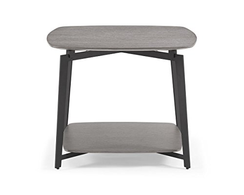 Whiteline ST1407-GRY Modern Mavis Side End Occasional Table, Medium/One Size, Gray - Mavis 1 Light