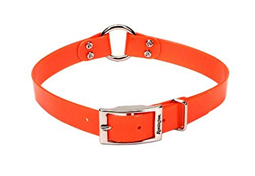Remington Orange 1-Inch by 20-Inch Waterproof Dog Collar [Large] (1-Pack)