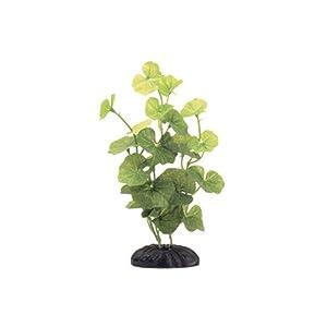 Marina Ecoscaper Hydrocotyle Silk Plant Plant, 8-Inch 1
