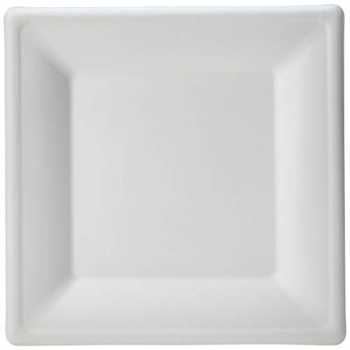 AmazonBasics Compostable Square Plate, 10-Inches, 250-Count