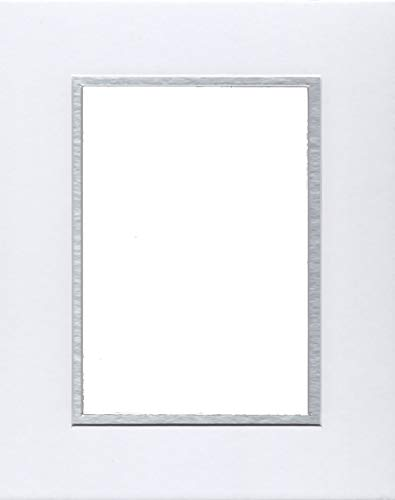 - 22x28 White & Silver Double Picture Mats Bevel Cut for 18x24 Pictures