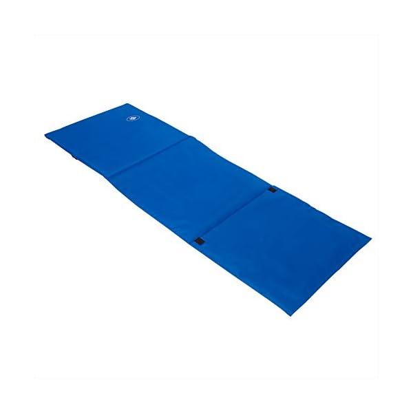 31jSKACoiNL Deuba 2X Strandmatte Faltbar Gepolstert Kissen verstellbare Rückenlehne Staufach Badematte Isomatte Strandtuch Blau