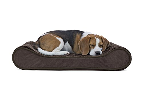 FurHaven Pet Dog Bed | Orthopedic Minky Plush & Velvet Luxe Lounger Pet Bed for Dogs & Cats, Espresso, Medium