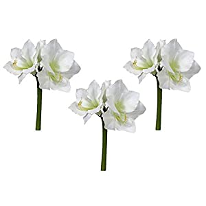 Floral Kingdom Real Touch 30' XLarge Artificial Amaryllis Flowers for vase Arrangements, Home/Office Decor (Pack of 3) 1