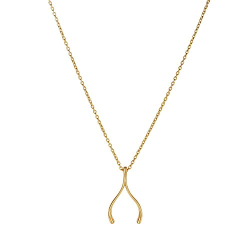 14k Yellow Gold Wishbone Charm Chain Necklace, 17