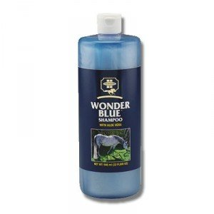 Wonder Blue Horse Shampoo With Aloe Vera ()
