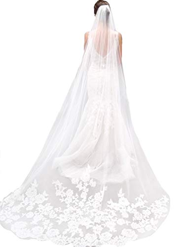 LittleB One tier Long wedding Veil tulle bridal veil with lace appliques embroidery. (White)