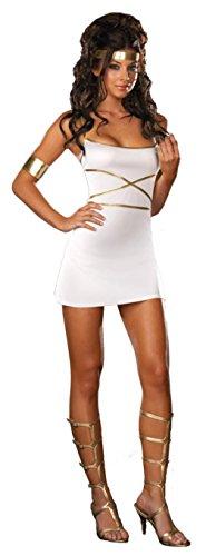 Dreamgirl Womens Oh My Goddess Stretch Knit Fancy Dress Halloween Themed Costume, 2XL (Goddess Stretch Costumes)