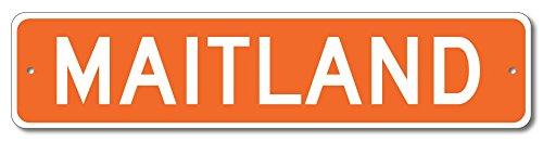 The Lizton Sign Shop Maitland  Missouri U S A  Custom America Aluminum Metal Street Sign   Orange   9 X36