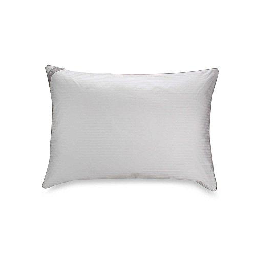 Isotonic Indulgence Standard/Queen Back/Stomach Sleeper Pillow