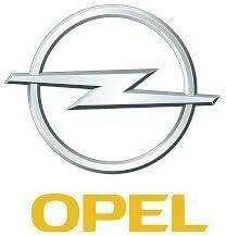 Opel /Ölfilter Original GM